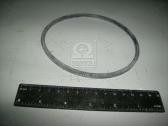 Кольцо упл. фильтра масляного (пр-во ЯзРТИ) ЯРТ 840.1012083-10